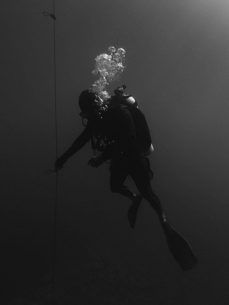 Diver Course